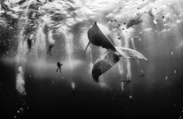 Foto de Anuar Patjan Floriuk
