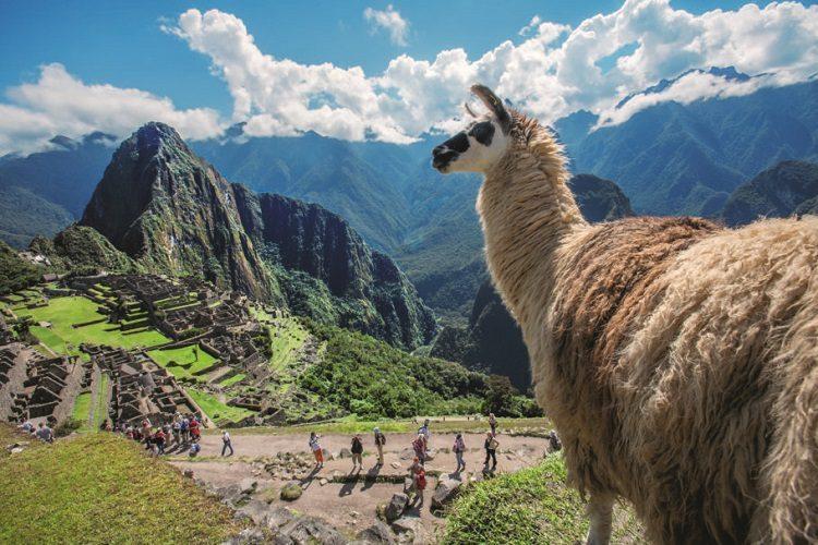 Peru week