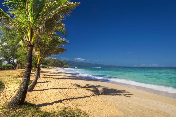 Ilha Maui | Destino paradisíaco tem opções para o ano inteiro 1