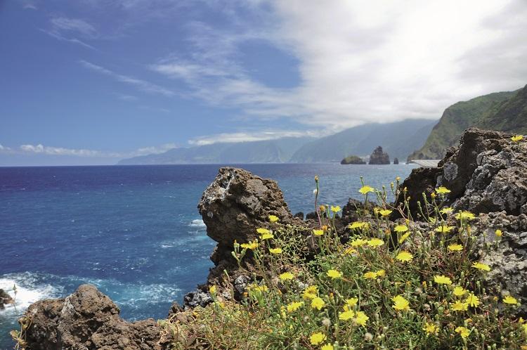 Vai começar o Festival do Atlântico na Ilha da Madeira