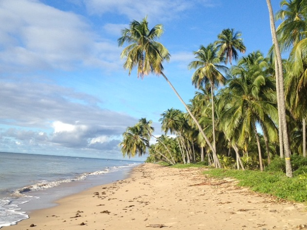 A Praia do Patacho