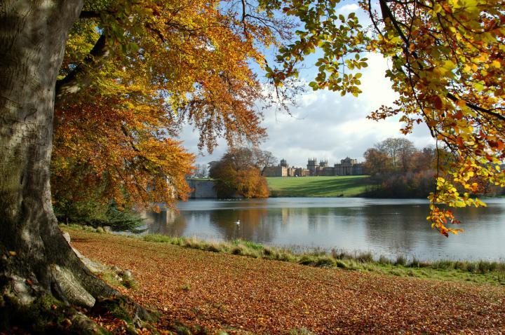 Autumnal Walks at England's Treasure Houses