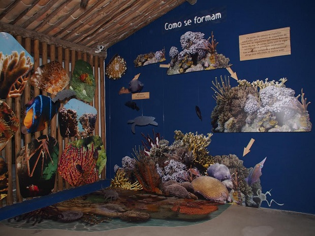 Espaço Coral Vivo Mucugê - Nova exposição permanente e gratuita