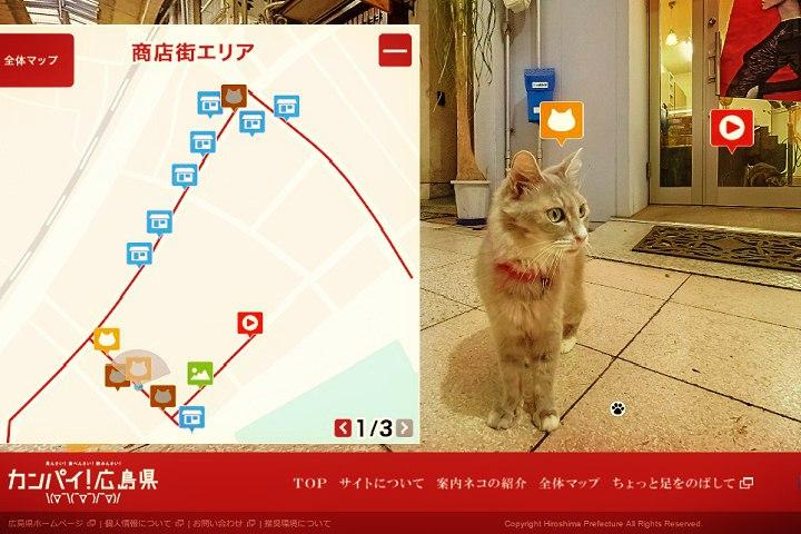 Cat Street View. Foto: Reprodução do site