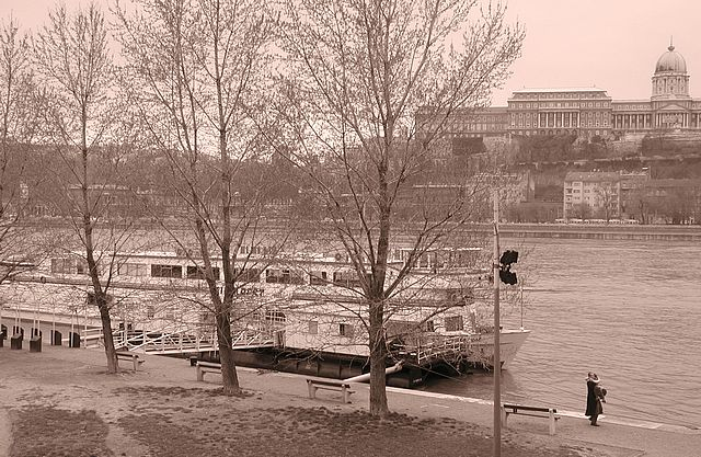 Hungary_Budapest_river_love