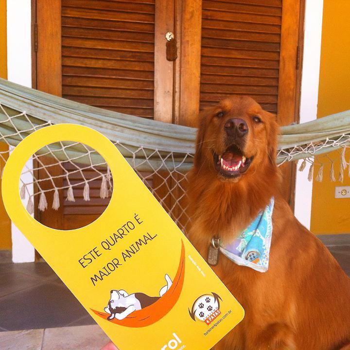 www.turismo4patas.com.br
