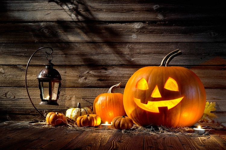 jack-o-lantern-and-other-pumpkins-for-halloween