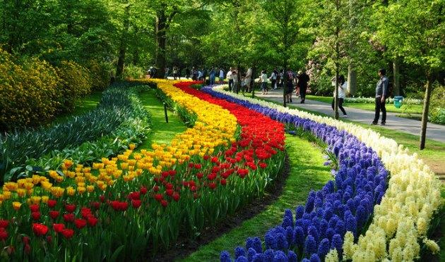 Amsterdu00e3 u00e9 a capital da Holanda.