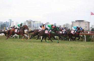 Jockey Club de São Paulo (1)
