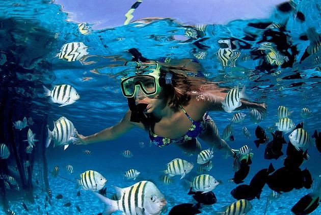 México - Mergulho