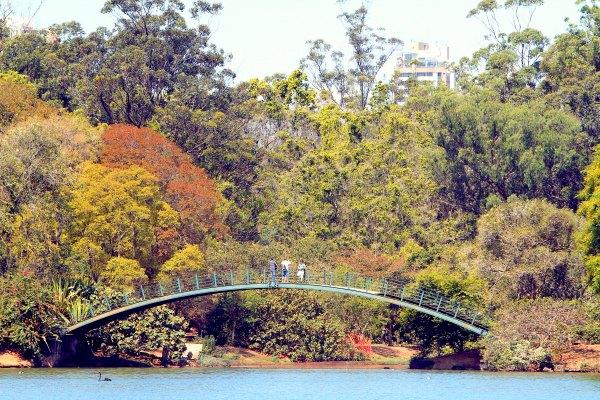 Parque do ibirapuera_out11_caiopimenta (5)