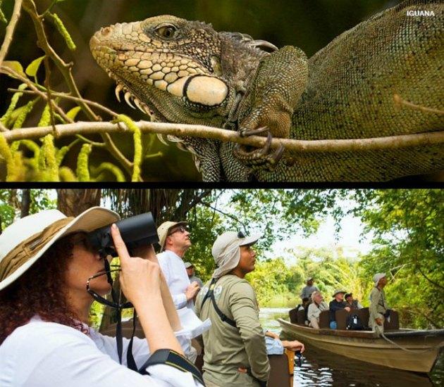 Passeios na Amazônia
