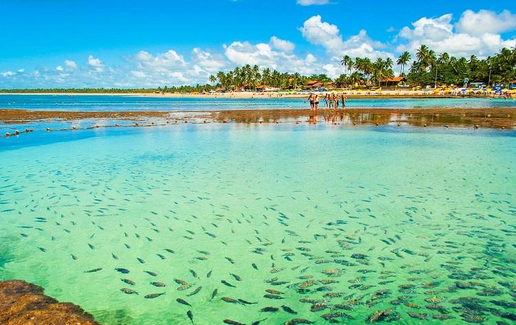 12 maravilhosas praias de Pernambuco