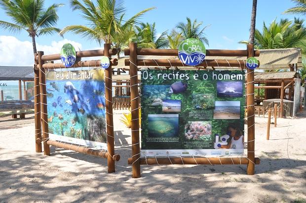 Projeto Coral Vivo - Trilhas dos recifes 2