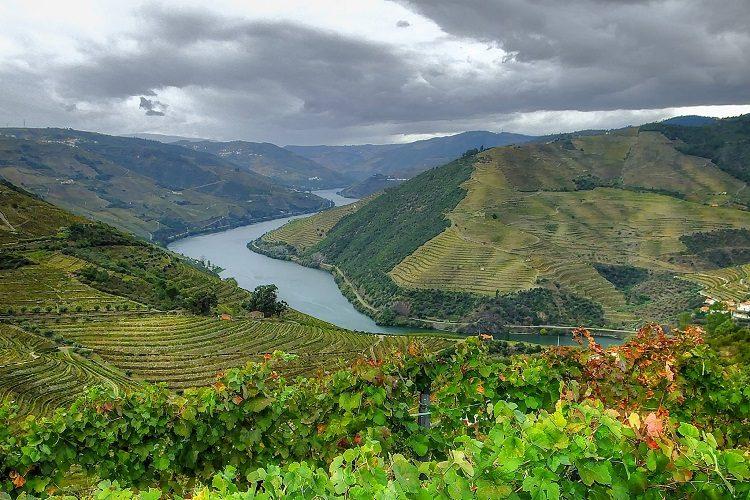 Do Douro ao Alentejo, conheça as principais rotas dos vinhos de Portugal