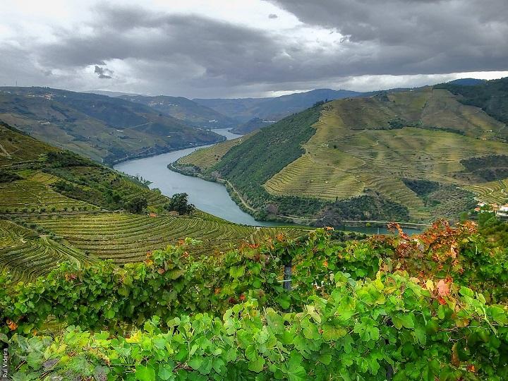 Rio Douro1
