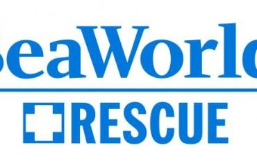 SW-Rescue-logo-blue