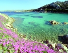 A primavera colorida da Itália