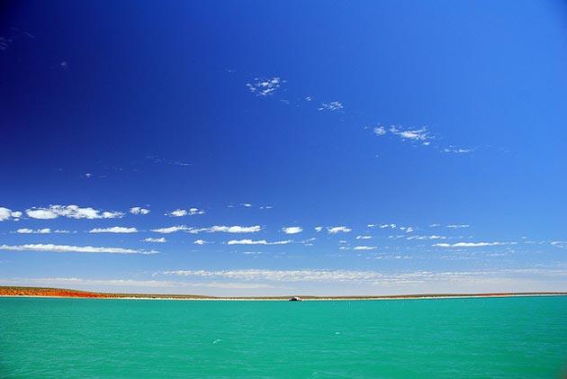 Shark-Bay-(Austrália)