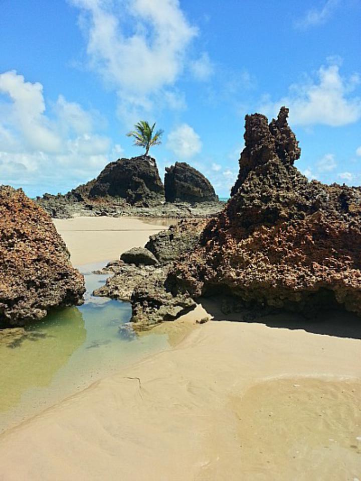 Nus na areia  Confira as 10 melhores praias de nudismo do