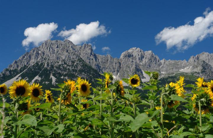 Tirol_4_01 Austria