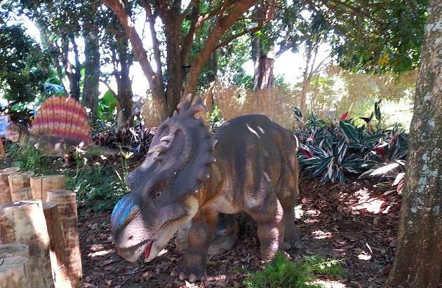 Vale dos Dinossauros (4)