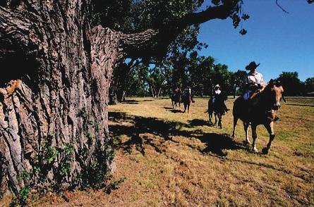 Vida de caubói no Big Bend National Park