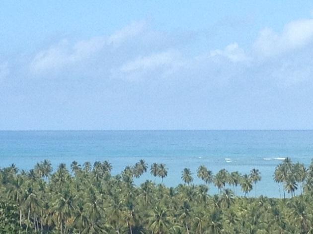 Vista da RotaEcológicadesde o Alto da Cruz, São Miguel dos Milagres, Alagoas