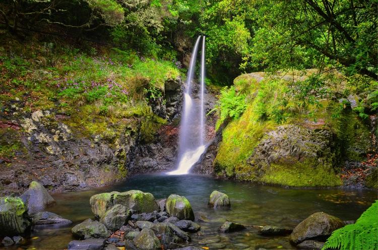 Ilha da Madeira - O destino ideal para os amantes da natureza