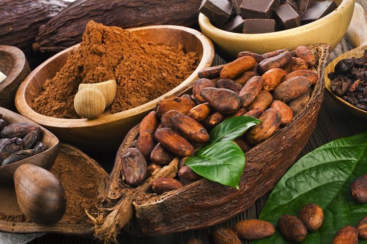 Viaje pelos saborosos destinos do chocolate brasileiro 1