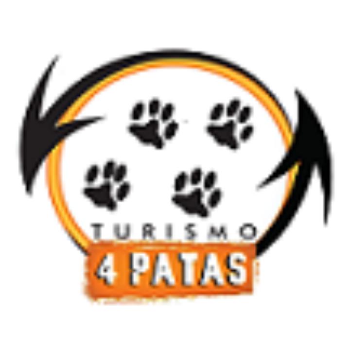 logo_novo_t4 pq