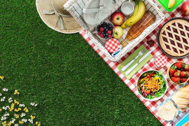 Image Result For Picnic Table Top