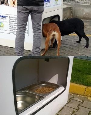 pugedon-Sustentabilidade a favor dos animais