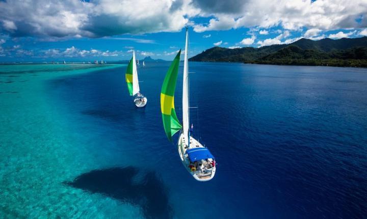 sailing-regatta-