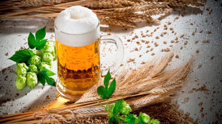 size_810_16_9_copo-de-cerveja (1)